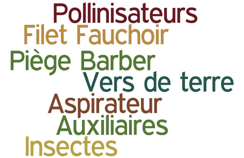 image wordle_biodiversite_image.png (86.3kB)
