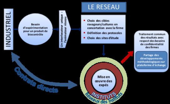 image ReSeaux_3_reseaux_20171130113303_20180319140147.png (0.3MB)