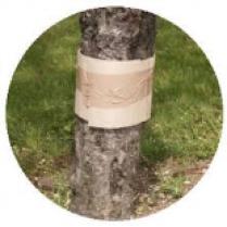 image cardboard.png (50.3kB)